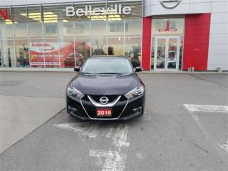 Used 2016 Nissan Maxima SV 1 OWNER LOCAL TRADE for sale in Belleville, ON
