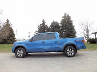 Used 2011 Ford F-150 FX4 Super Crew V8 for sale in Thornton, ON