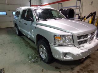 Used 2010 Dodge Dakota SXT 4x4 Crew Cab 131.3 in. WB for sale in Edmonton, AB