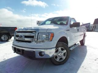 Used 2014 Ford F-150 4WD REG CAB 122.5 XLT for sale in Midland, ON