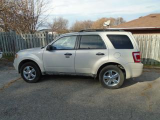 Used 2009 Ford Escape XLT for sale in Orillia, ON