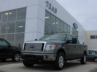 Used 2012 Ford F-150 XLT for sale in Edmonton, AB