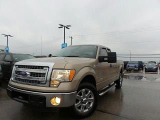 Used 2013 Ford F-150 XLT EcoBoost 3.5L V6 for sale in Midland, ON