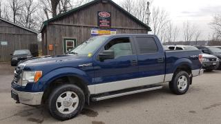 Used 2009 Ford F-150 XLT, SUPERCREW, 4X4 for sale in Cambridge, ON