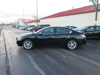 Used 2012 Nissan Maxima SV FWD for sale in Cayuga, ON