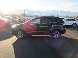 Used 2013 Ford ESCAPE SEL 4WD for sale in Cayuga, ON