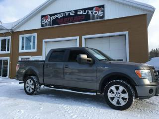 Used 2009 Ford F-150 FX4 CUIR for sale in Neuville, QC