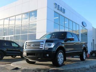 Used 2014 Ford F-150 PLATINUM for sale in Edmonton, AB