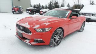 Used 2017 Ford Mustang 2.3L Ecoboost 310Hp Executive Demo for sale in Stratford, ON
