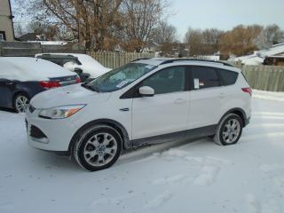 Used 2014 Ford Escape SE for sale in Orillia, ON