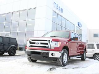 Used 2014 Ford F-150 XLT for sale in Edmonton, AB