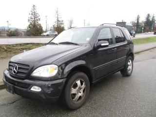 Used 2002 Mercedes-Benz ML 320 Classic for sale in Surrey, BC