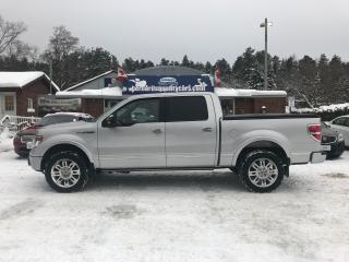 Used 2014 Ford F-150 PLATINUM for sale in Flesherton, ON