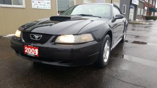 Used 2003 Ford Mustang for sale in Tilbury, ON