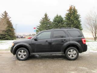 Used 2009 Ford Escape XLT V6 AWD for sale in Thornton, ON