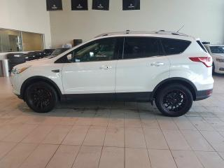 Used 2013 Ford Escape Titanium - B/U Cam, Heated Leather + Sunroof! for sale in Red Deer, AB
