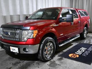 Used 2014 Ford F-150 XLT for sale in Red Deer, AB