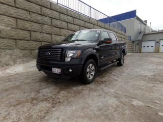 Used 2011 Ford F-150 FX4 for sale in Fredericton, NB