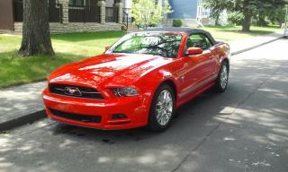 Used 2013 Ford Mustang V6 Premium for sale in Calgary, AB