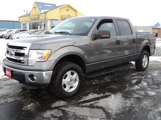 Used 2013 Ford F-150 XLT SuperCrew 4X4 5.0L 5ft Box for sale in Brantford, ON