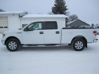 Used 2009 Ford F-150 XLT for sale in Melfort, SK