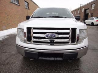Used 2009 Ford F-150 XLT, 4X4, Crew Cab for sale in North York, ON