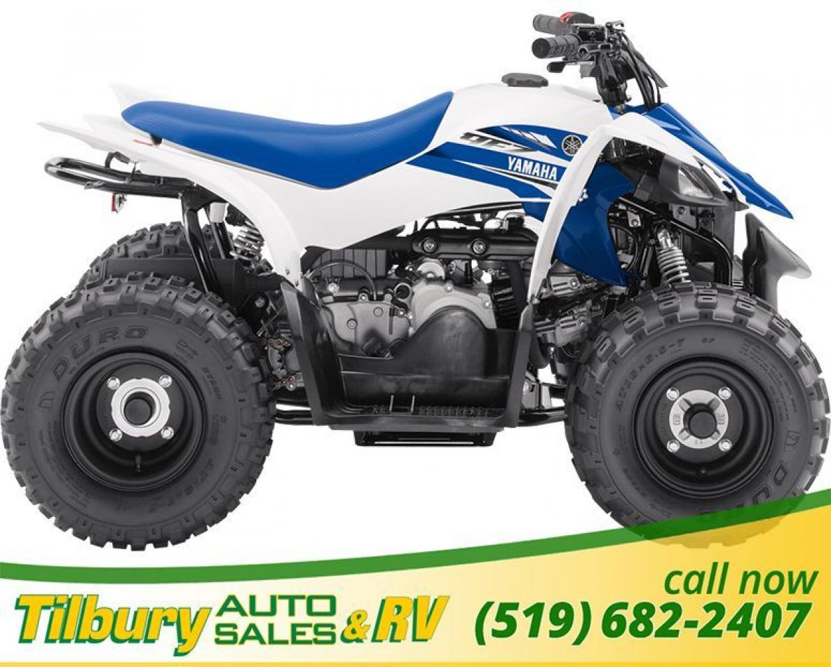 2018 Yamaha YFZ50 (Raptor 50) 50cc, SOHC, 2-valve, 4-stroke