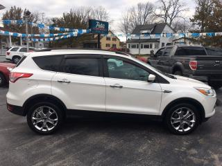 Used 2014 Ford Escape SE for sale in Dunnville, ON