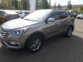 Used 2018 Hyundai Santa Fe SE for sale in Quesnal, BC