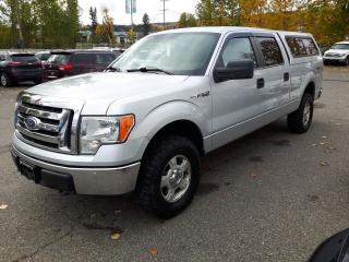 Used 2010 Ford F-150 XLT for sale in Quesnal, BC