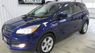 Used 2014 Ford Escape SE for sale in Chatsworth, ON