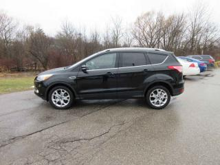 Used 2016 Ford Escape Titanium 4WD for sale in Cayuga, ON