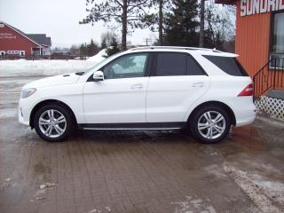 Used 2014 Mercedes-Benz ML 350 ML 350 BlueTEC for sale in Sundridge, ON