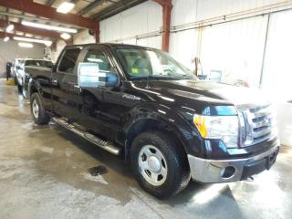 Used 2009 Ford F-150 XLT 4x4 Crew *AS IS* for sale in Midland, ON