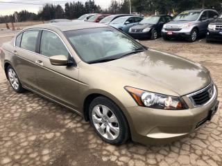 Used 2008 Honda Accord EX, low km's, 1 owner for sale in Hornby, ON