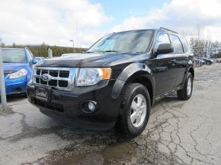 Used 2011 Ford Escape XLT V6 / LOCAL ONTARIO CAR for sale in Newmarket, ON