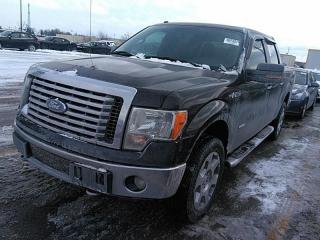 Used 2011 Ford F-150 XLT XTR 4X4 LEATHER MOON ROOF for sale in Waterloo, ON