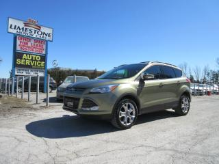 Used 2013 Ford Escape SEL AWD / ONE OWNER / ACCIDENT FREE for sale in Newmarket, ON