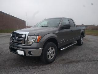 Used 2011 Ford F-150 XLT for sale in Oshawa, ON