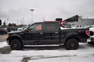Used 2011 Ford F-150 XLT for sale in Aurora, ON