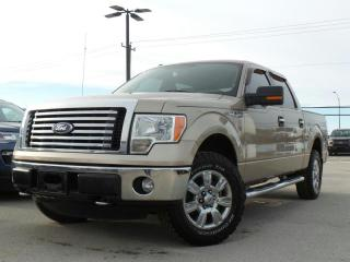 Used 2012 Ford F-150 XLT 5.0L V8 for sale in Midland, ON