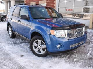 Used 2009 Ford Escape XLT for sale in Edmonton, AB