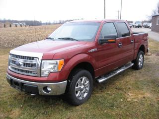 Used 2014 Ford F-150 XLT for sale in Burgessville, ON