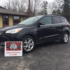 Used 2013 Ford Escape SEL for sale in Glencoe, ON