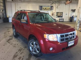 Used 2011 Ford Escape XLT | Leather | Heated Seats | CD Player | for sale in Edmonton, AB