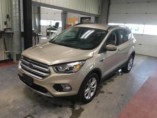 Used 2017 Ford Escape SE *B.Cam for sale in Winnipeg, MB
