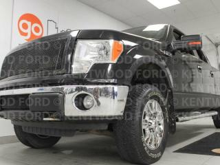 Used 2010 Ford F-150 XLT 5.4L V8 with power drivers seat and keyless entry for sale in Edmonton, AB