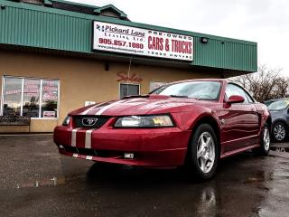 Used 2004 Ford Mustang Base CONVERTIBLE!! for sale in Bolton, ON