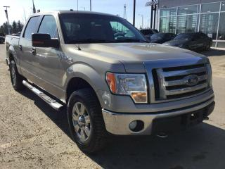 Used 2009 Ford F-150 XLT, 5.4L V8, A/C for sale in Edmonton, AB