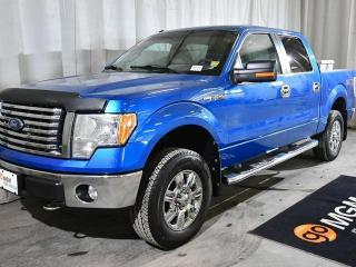 Used 2010 Ford F-150 XLT 4x4 SuperCrew Cab 5.5 ft. box 145 in. WB for sale in Red Deer, AB